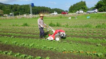 農場草刈り1